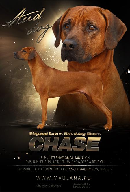 chase2016black