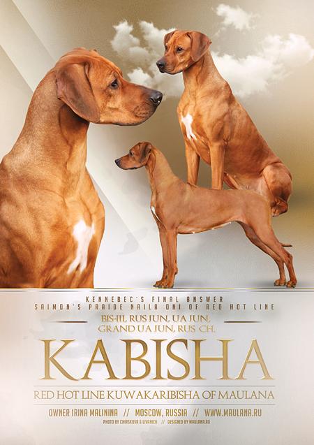 kabisha-450