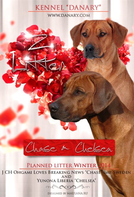 chase+chelsea1